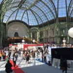 salon grand palais paris